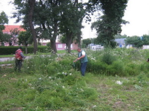 ambrozija-2008